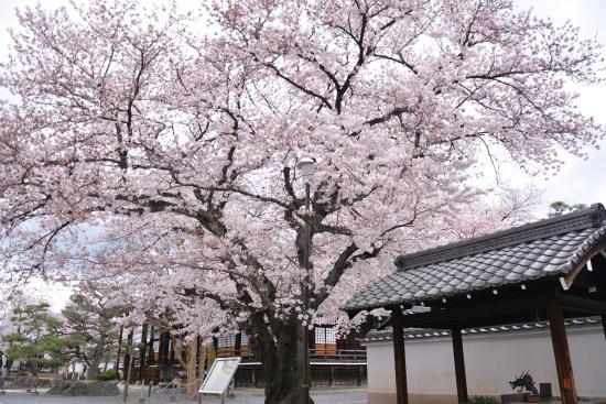 Honryuji Temple