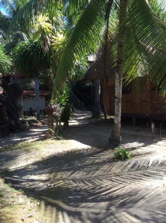 Alona Golden Palm Resort: Pathway to beach