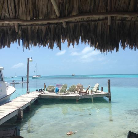 Sea Dreams Hotel: Under the palapa reading with a view!