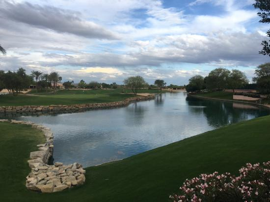 Surprise, AZ: View from the patio!