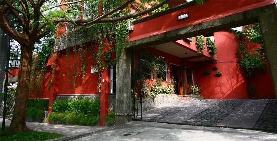 Arbol de Fuego Eco-Hotel: A Central Hotel in San Salvador.