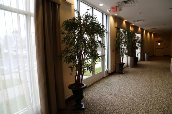 Holiday Inn Manassas - Battlefield Photo