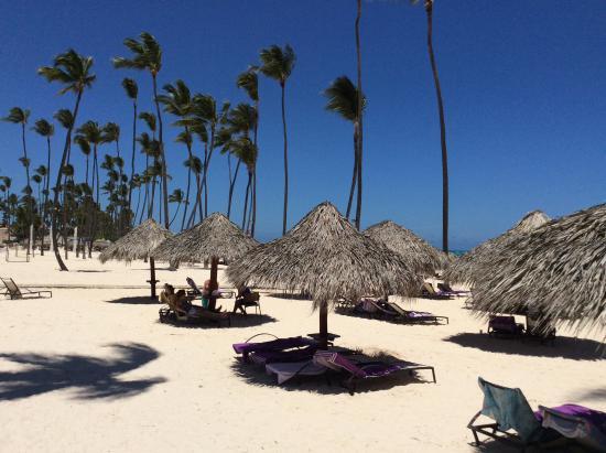 beautiful sand beach picture of paradisus palma real golf spa rh tripadvisor com