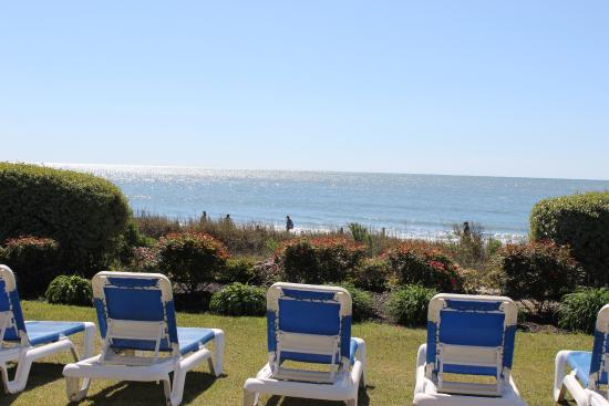 view from outdoor pool chairs dunes beach ocean picture of rh tripadvisor com