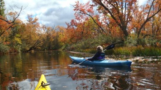 Kingsley, Μίσιγκαν: Kayaks