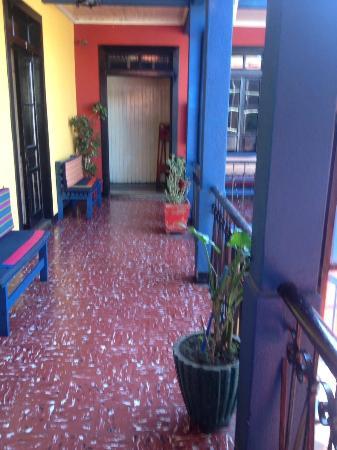 The Black Cat Hostel Xela Image