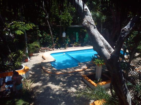 Koox City Garden Hotel: pool and garden