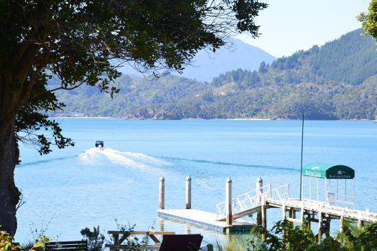 Marlborough Region, Selandia Baru: Lodge jetty and Kenepuru Sound