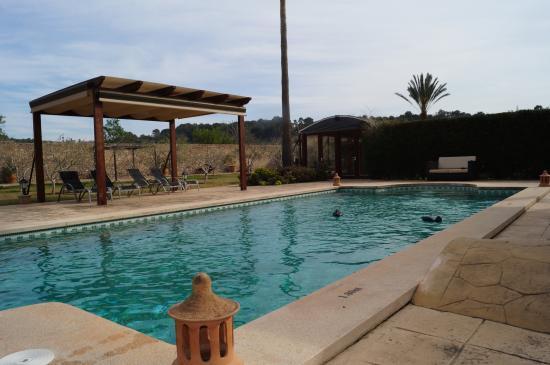 Agroturismo S'Hort De Son Caulleles : Der Pool