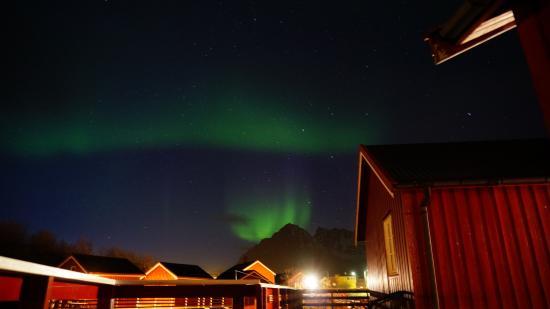 Henningsvaer Rorbuer: Polarlich direkt vor der Hütte