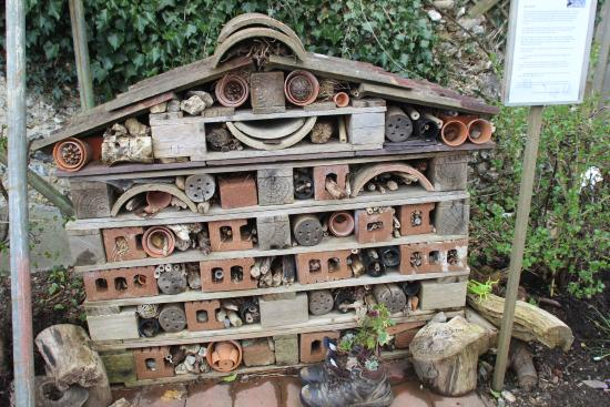 Bug Hotel Picture Of Hughenden Manor High Wycombe