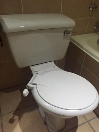 Summerstrand Hotel: Our broken toilet