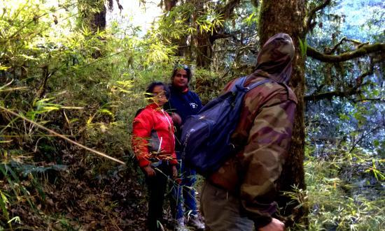 KMVN (Kumaon Mandal Vikas Nigam) Tourist Rest House: Trekking in jungle