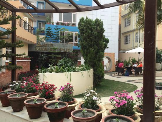 Hotel Moonlight: photo1.jpg
