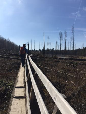 Wilder Kermeter Natur-Erlebnispark