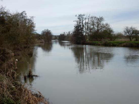 The Valley: River along Evesham Country Park.