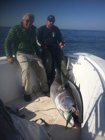 West Chatham, Массачусетс: Light tackle bass and tuna on cape cod