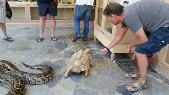 Aquaworld Aquarium & Reptile Rescue Centre - Picture of