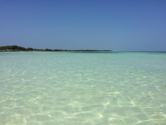Bahia Honda State Park And Beach Colori Stupendi
