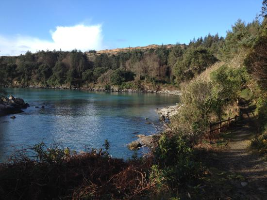 Bellatrix : The Cove