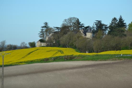 Roiffe, France : vue de la propriété