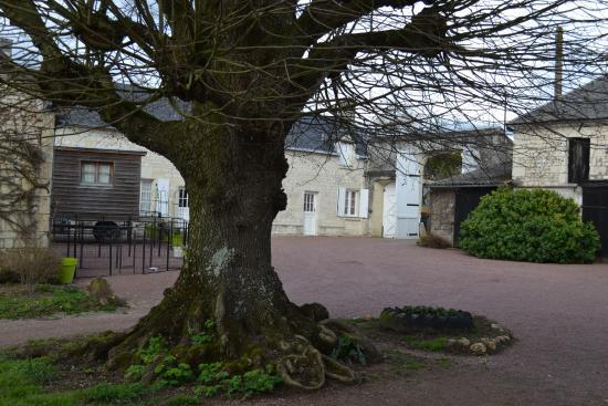 Roiffe, France : tout près de notre roulotte