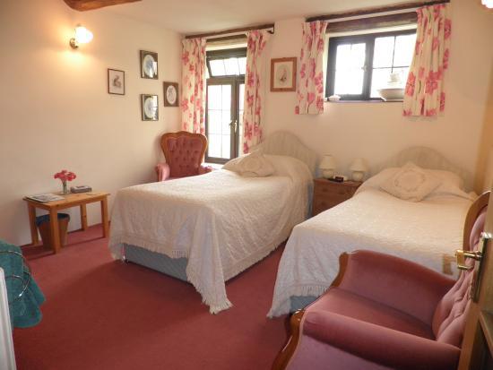 Dorstone, UK: twin /single room