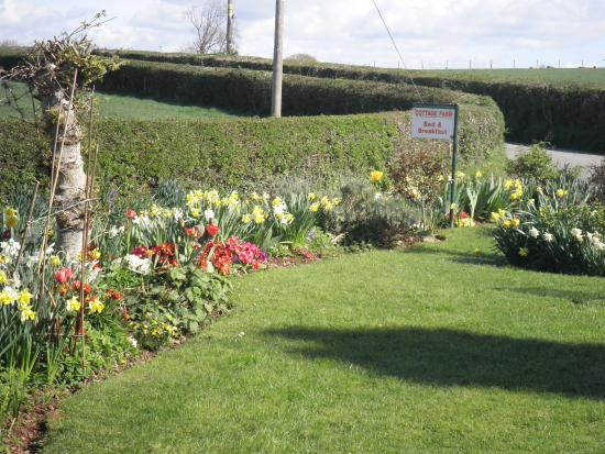 Dorstone, UK: Front garden and views across the fields