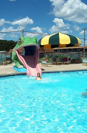 photo2 jpg picture of flamingo motel suites wisconsin dells rh tripadvisor com