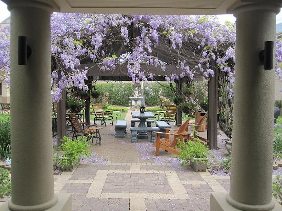 Vineyard Court Designer Suites Hotel: Courtyard Arbor