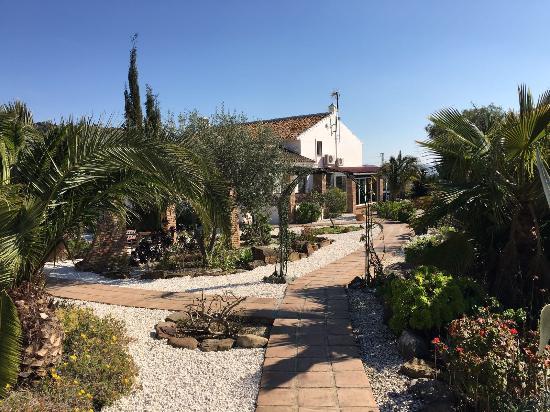 Cortijo Valverde: The garden