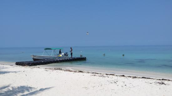Ocean Motion Tours: Our tour boat on Laughing Bird Caye and snorkelling area