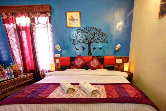 Hotel Drilbu Manali: Deluxe Room