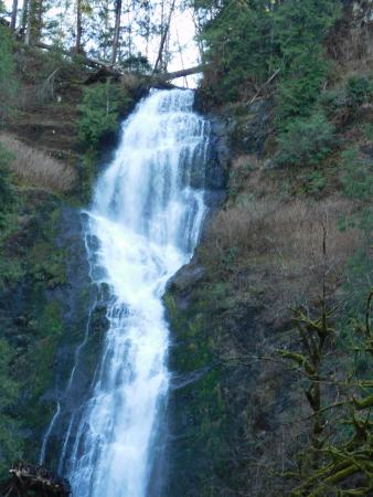 Tillamook, Oregón: Munson Creek Falls