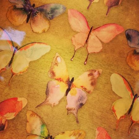 Washington, VA: Detail of Butterfly Trays on display.