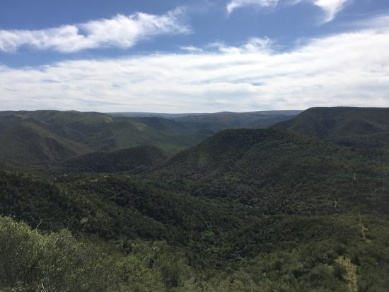 Addo, South Africa: Camp Figtree
