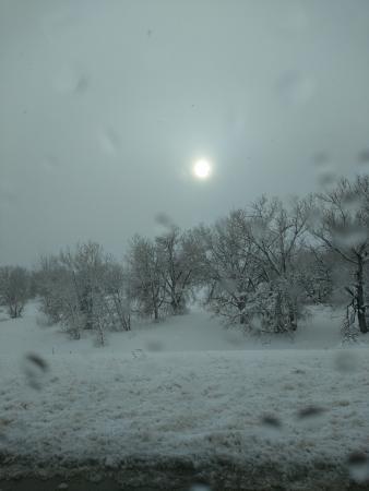 Hampton Inn & Suites Denver/Airport-Gateway Park: Snow, snow and more snow