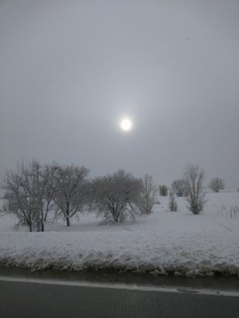 Hampton Inn & Suites Denver/Airport-Gateway Park: Still snowing