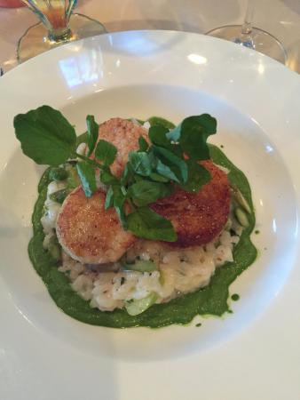 Sidney Willoughby Run : Incredible scallops, risotto & asparagus!