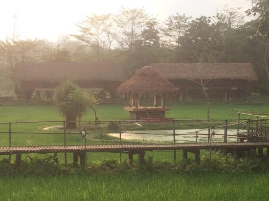 Diphlu River Lodge: photo1.jpg