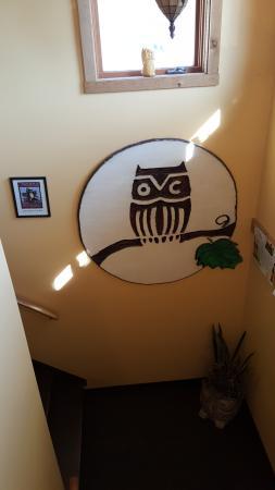 Cobden, IL: Logo for Owl Creek