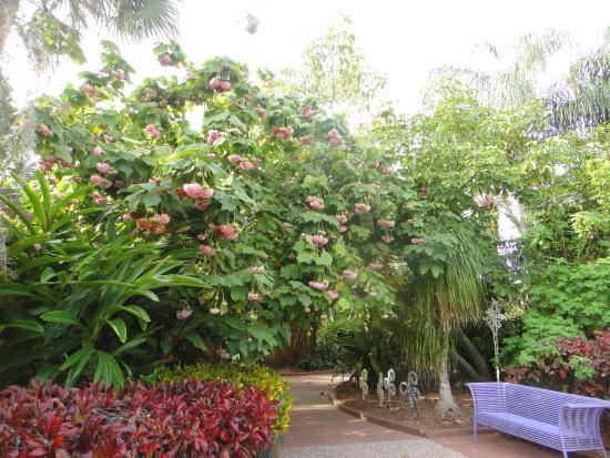 20160417 141702 Picture Of Florida Botanical Gardens Largo Tripadvisor