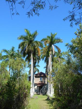 Collier Seminole State Park : View of the Blockhouse from the trail