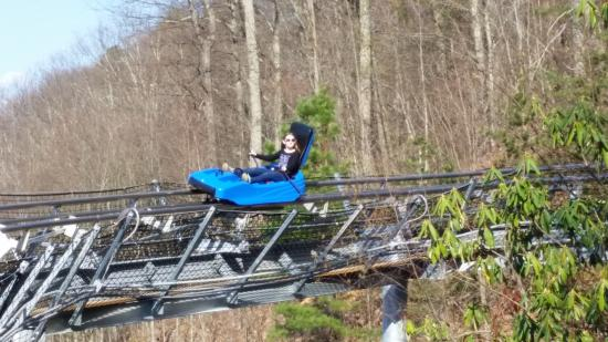 Ober Gatlinburg Amusement Park & Ski Area: The alpine coaster is a fun and fast way to cruise down the mountain