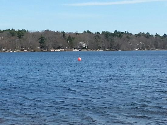 Sharon, MA: 20160410_150524_large.jpg