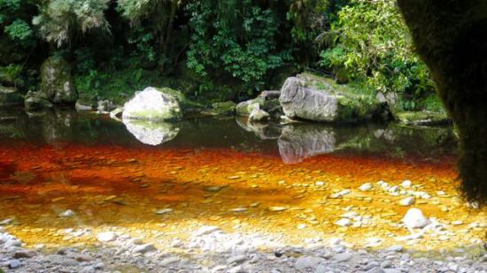 Karamea, Nueva Zelanda: Oparara River