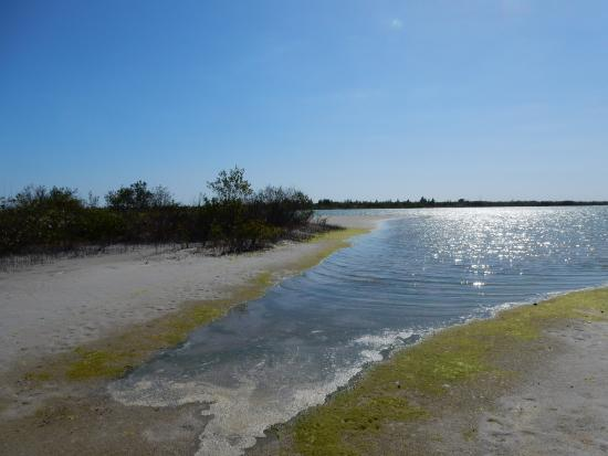 Boca Grande, Φλόριντα: lagoon