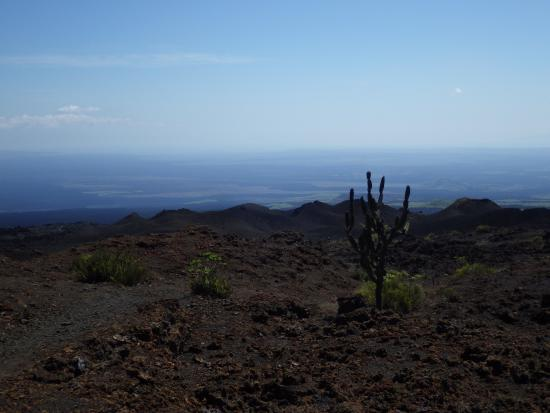 Isabela, Ekwador: vue du sommet sierra negra