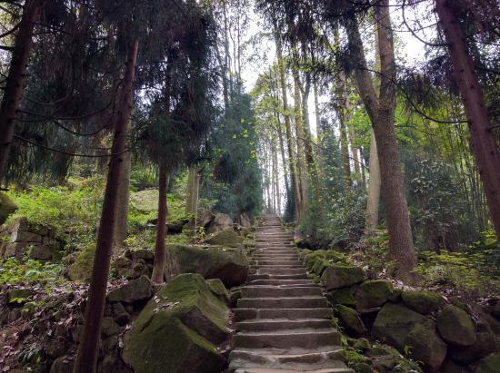 Pengzhou, จีน: 上下山可以走不同的山道,这是我下山的