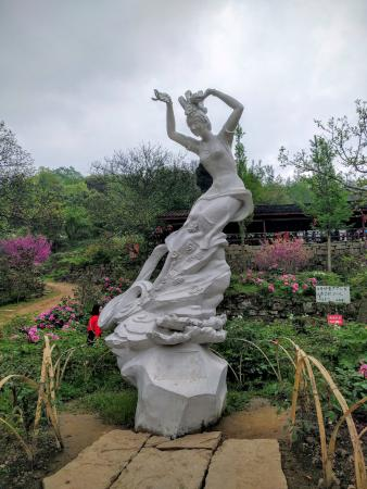 Pengzhou, China: 牡丹坪的牡丹仙子